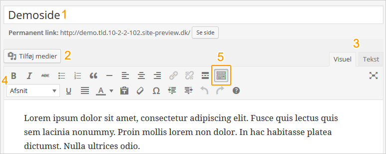 Wordpress tekst editor